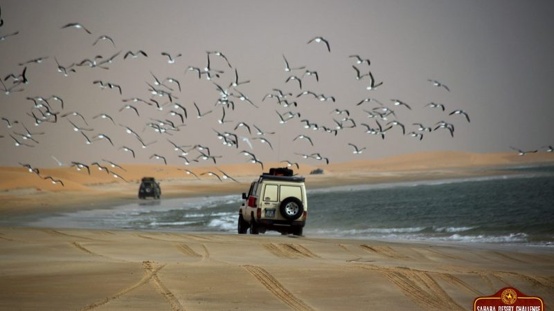 Offroad Playa De Mauritania