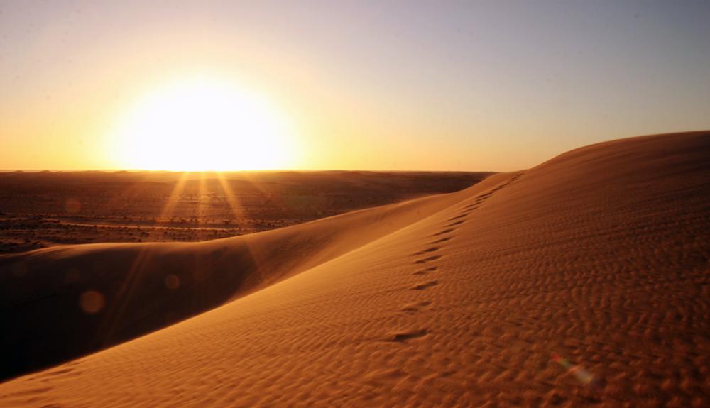 Sahara Desert Challenge 17