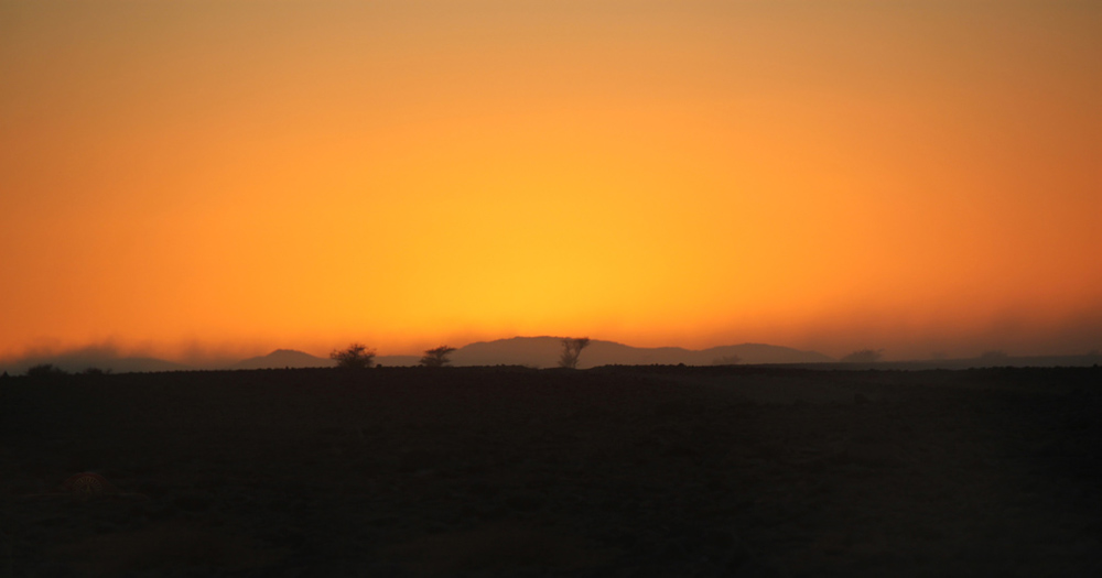 Sahara Desert Challenge 19