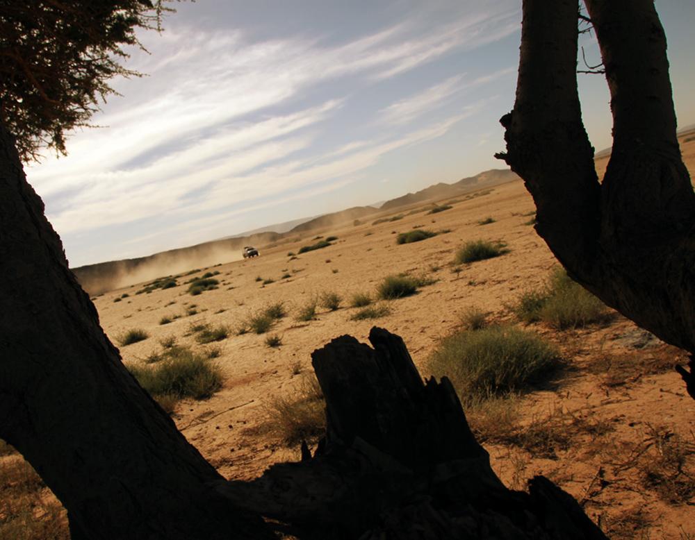 Sahara Desert Challenge 27