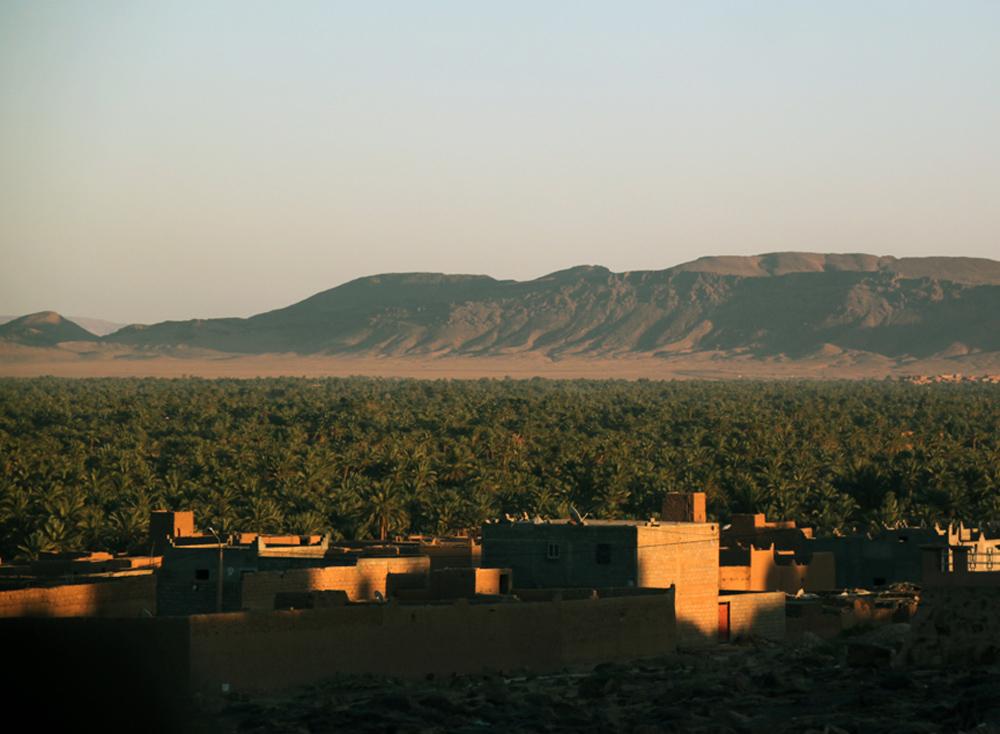 Sahara Desert Challenge 40