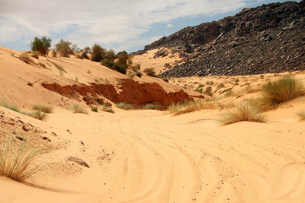 Sahara Desert Challenge 42