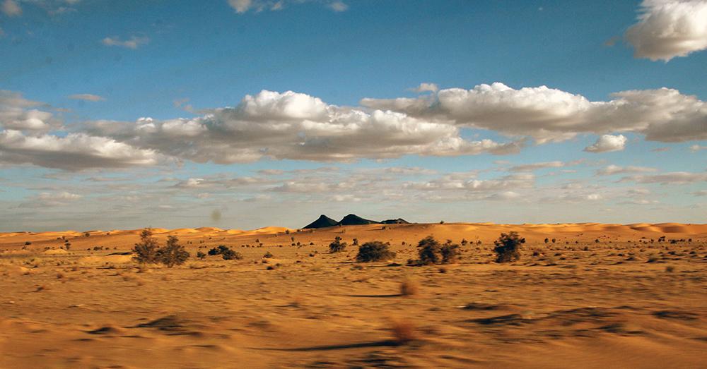 Sahara Desert Challenge 45