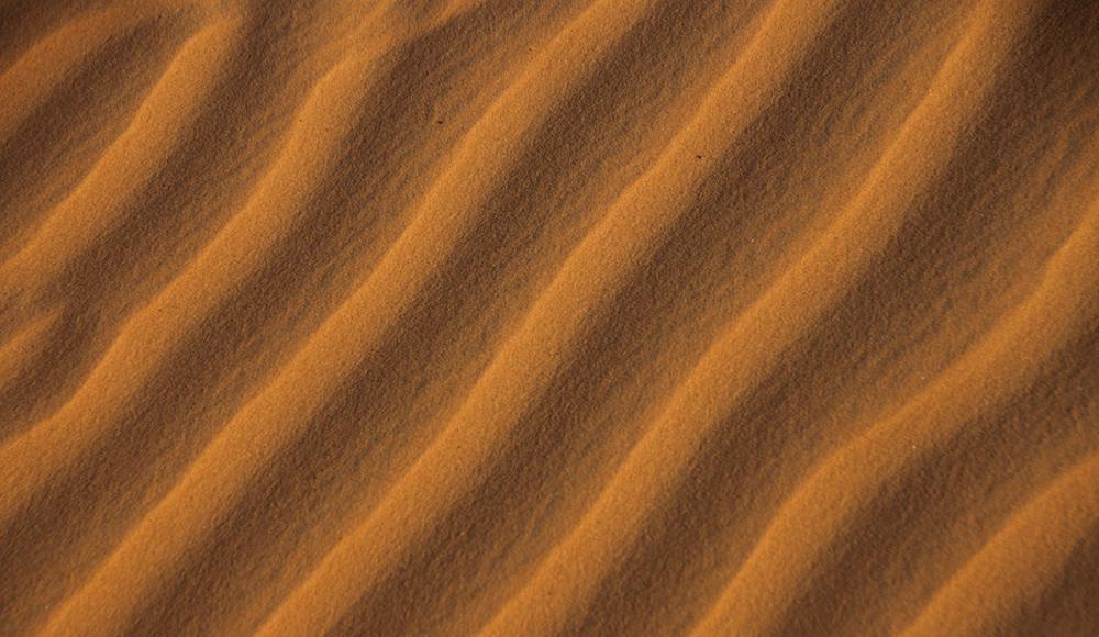 Sahara Desert Challenge 48
