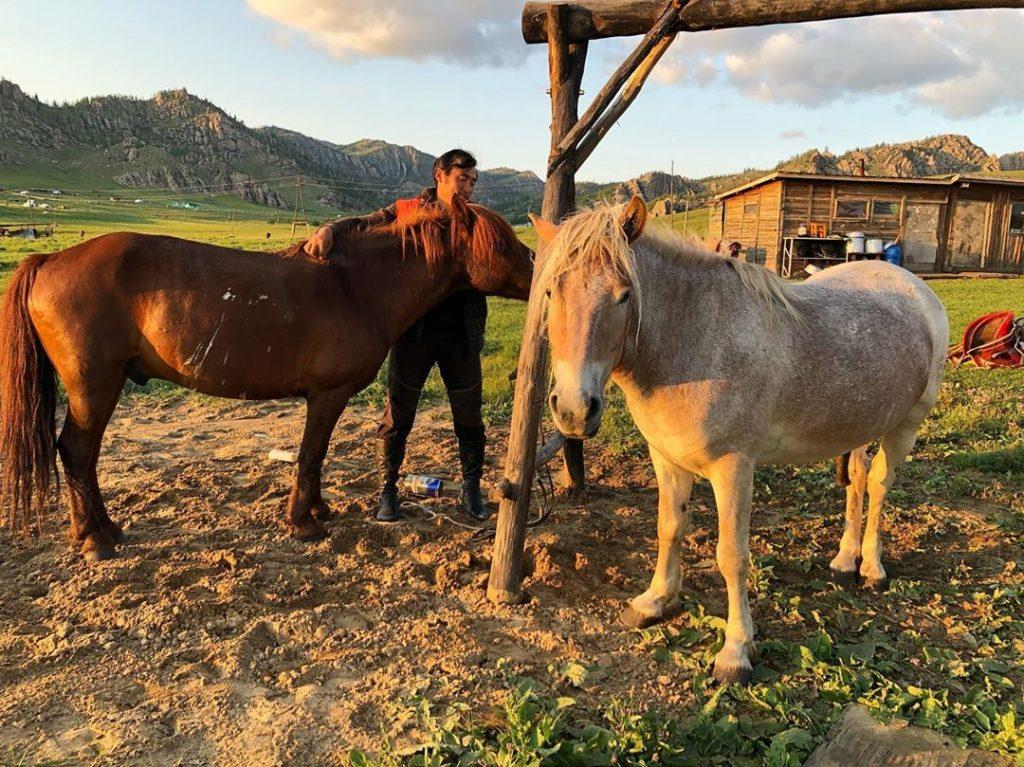 Transmongoliano Mongolia 19