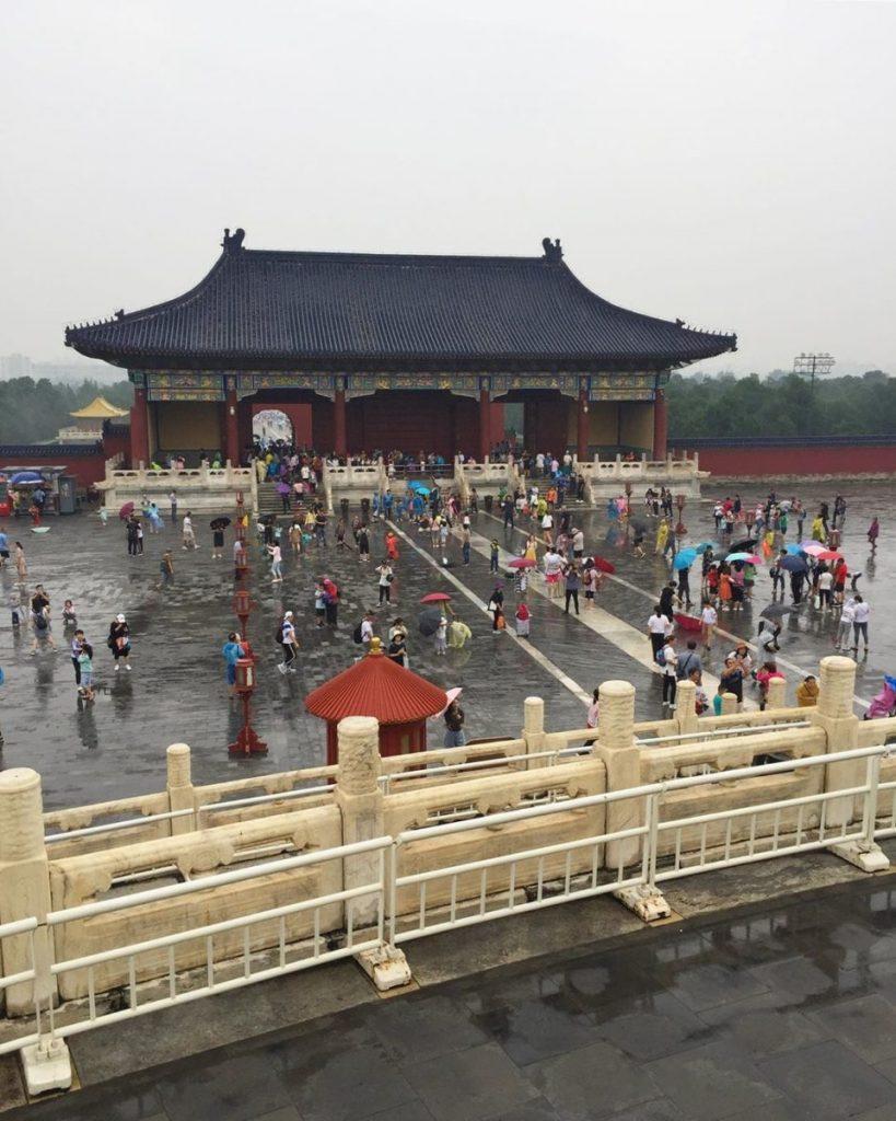 Transmongoliano Pekin 12