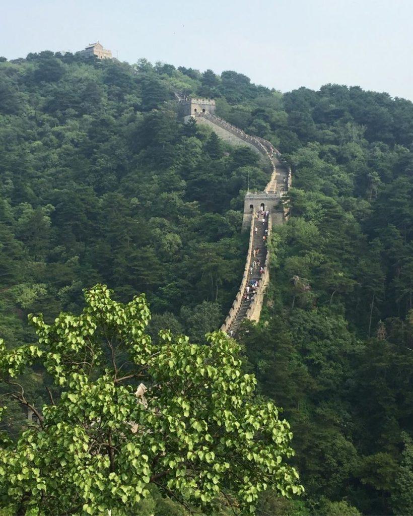 Transmongoliano Pekin 6
