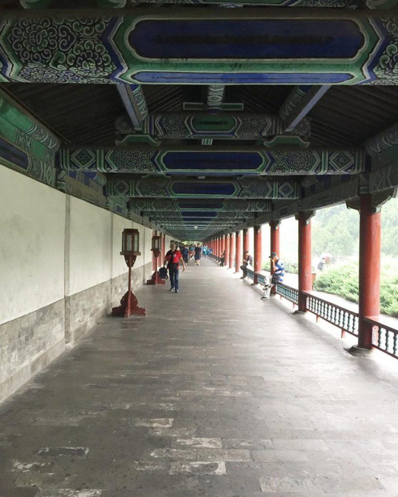 Transmongoliano Pekin 7