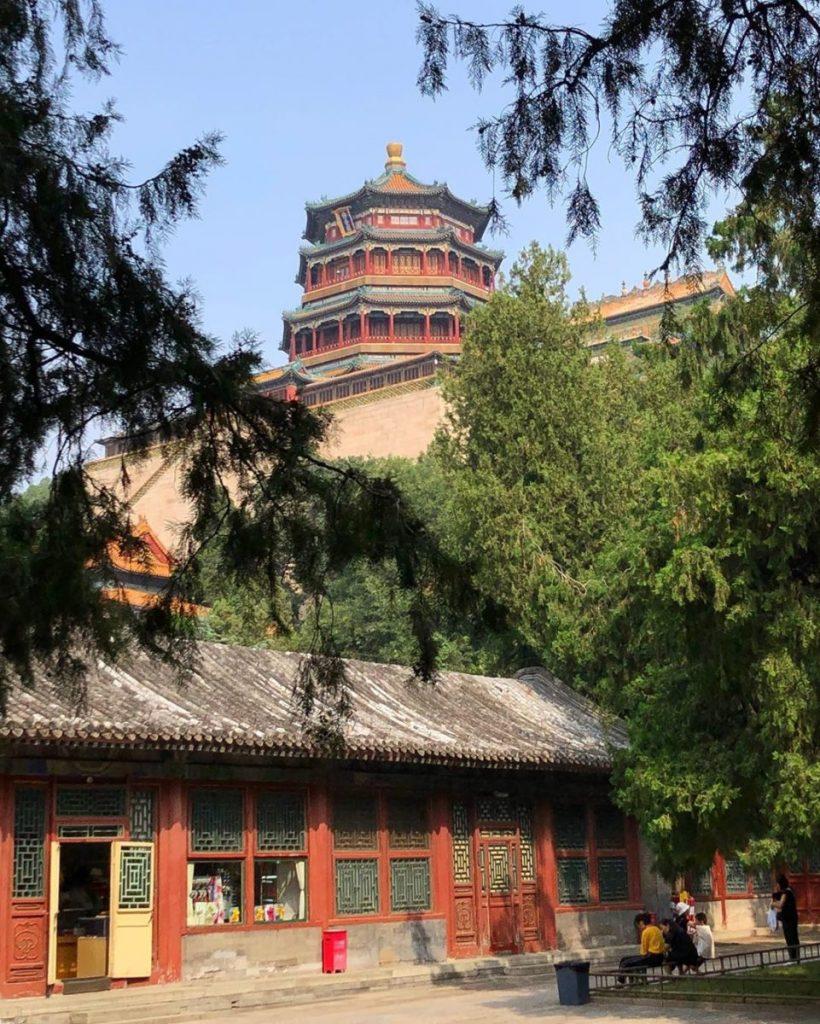 Transmongoliano Pekin 8