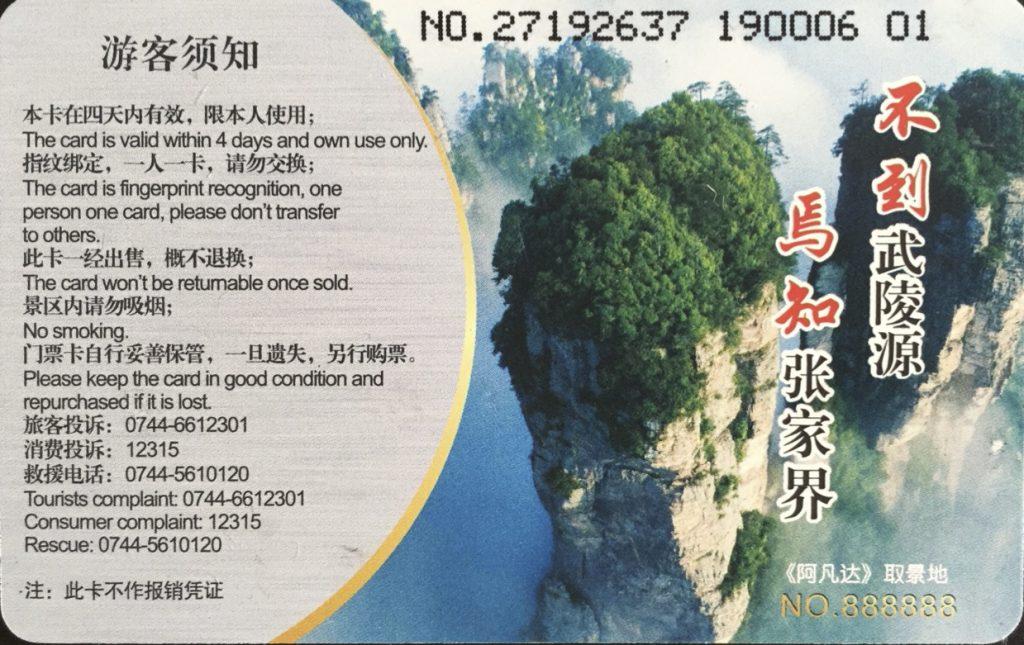 Entrada Parque Avatar Wulinyuan 2