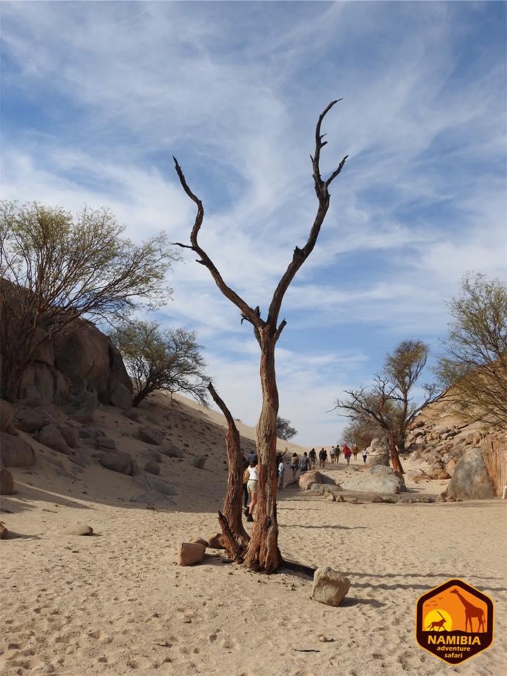 Viaje A Namibia En 4x4 22