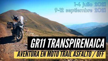Gr11 Transpirenaica